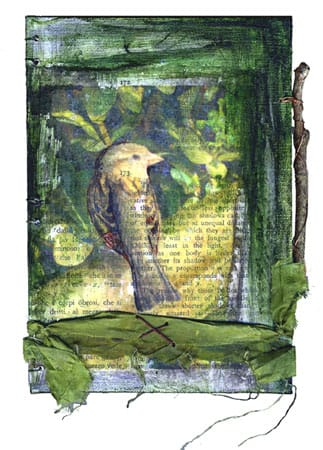 fully seeing the world