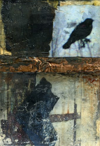 Urban Dialogue: Of Rust and Feathers