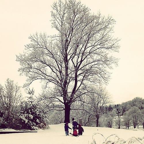 Snow + yarn