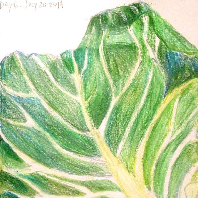 food+art: coleslaw