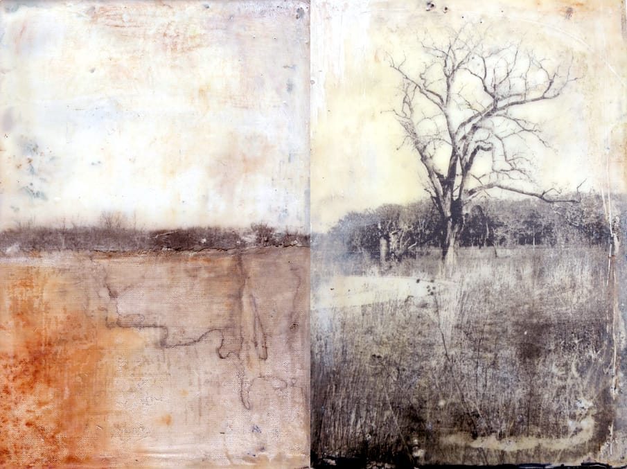 landscape 1 and 2