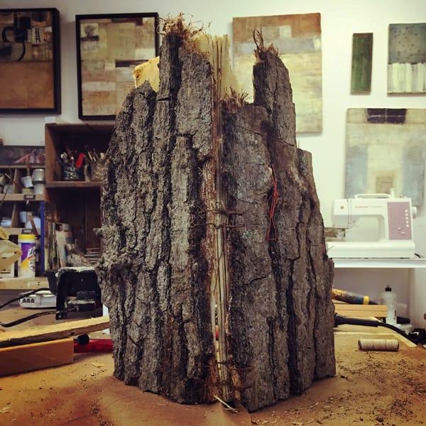 trees-innerspine