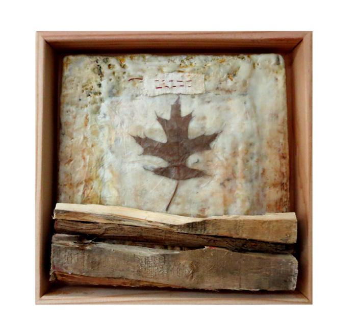 Foragings: Red Oak