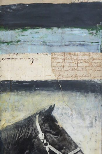 Horse Stripes Fine Art Print