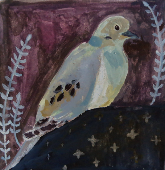 Day 2: Mourning Dove
