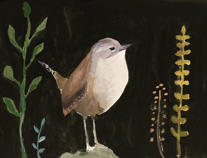 No. 29: Wren Print