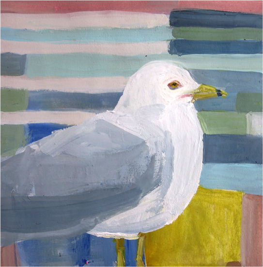 Day 40: Ring-billed Gull