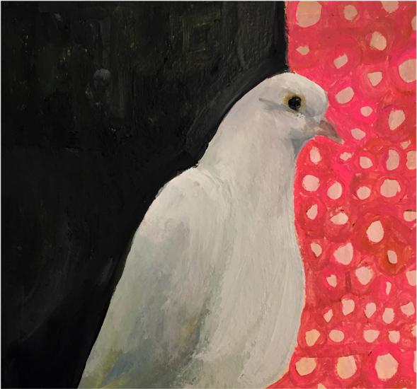 Day 13: Dove