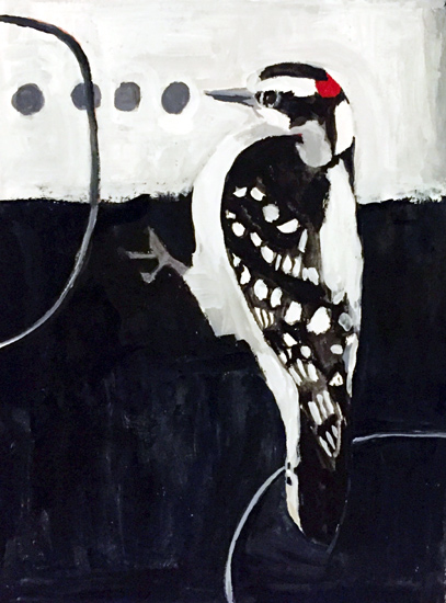 Day 14: Downy Woodpecker