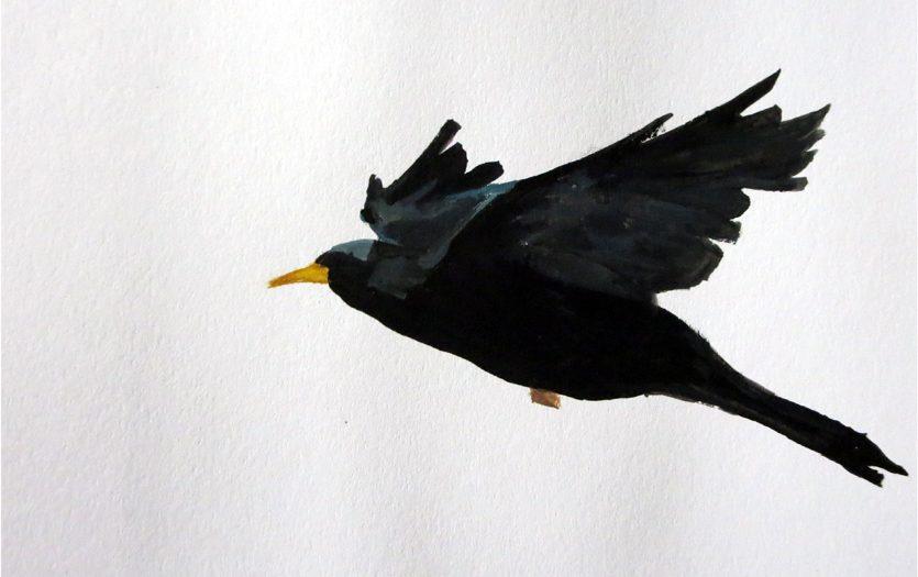 Day 21: Blackbird