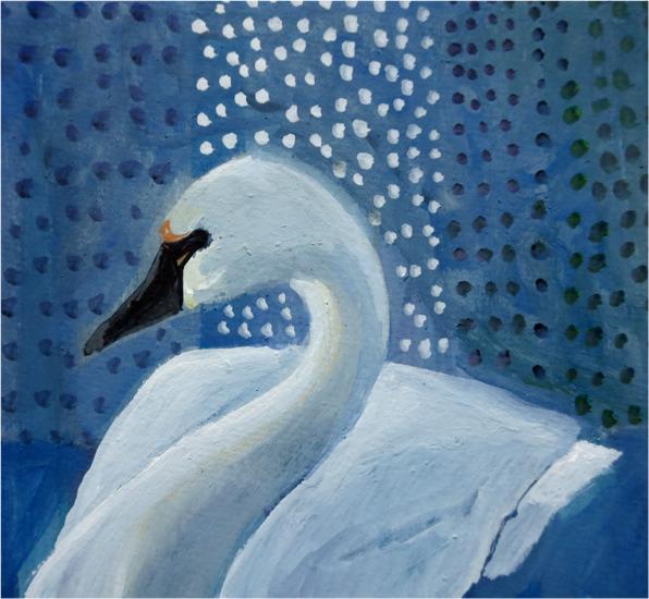 Day 31: Tundra Swan