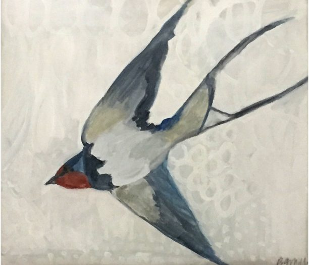 Day 36: Flying Swallow