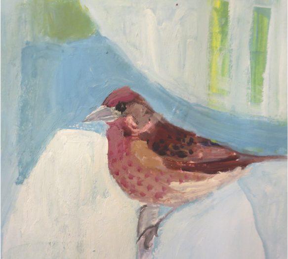 Day 5: Purple Finch
