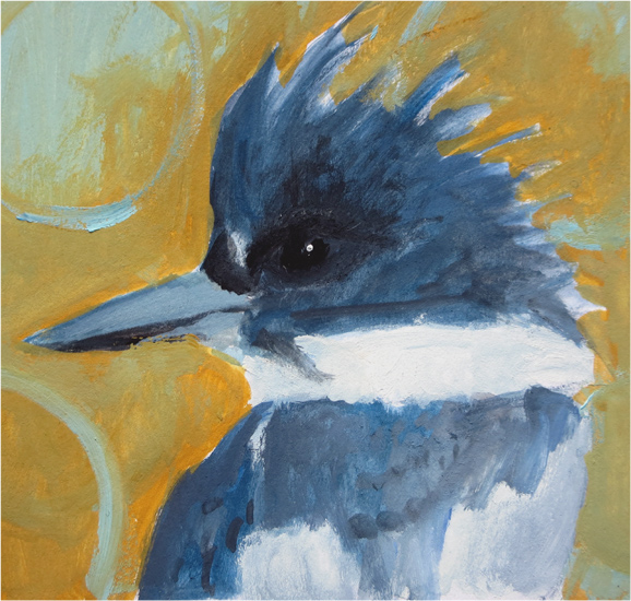 No. 51: Belted Kingfisher