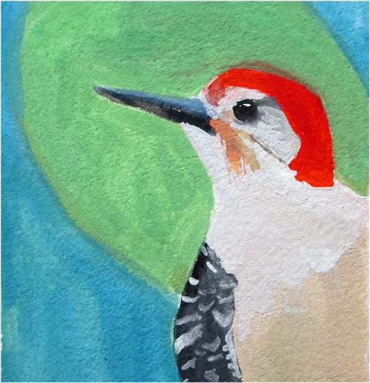 No 53: Red-bellied Woodpecker