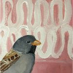 No 81: Black-chinned Sparrow