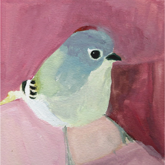 No. 62: Ruby-crowned Kinglet