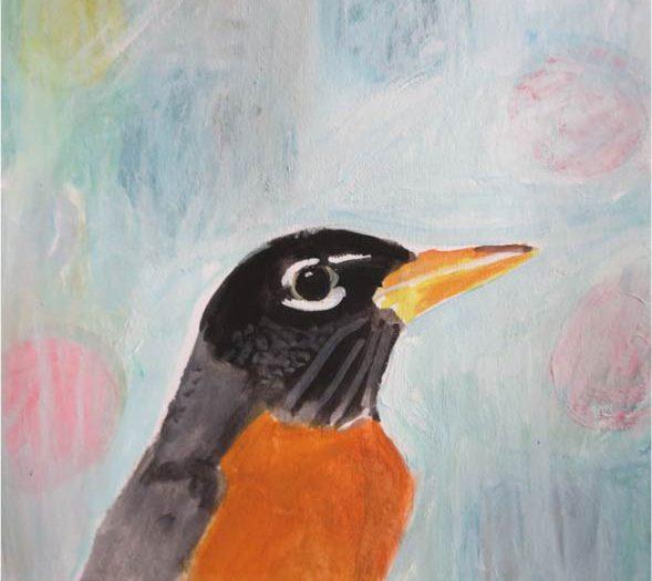 No. 67: American Robin