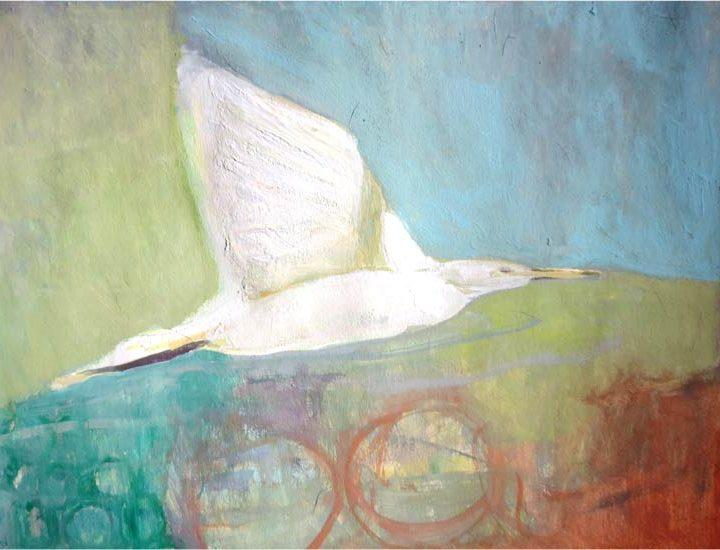 No. 72: Little Egret