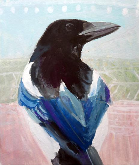 No 73: Magpie