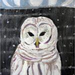 No 76: Barred Owl
