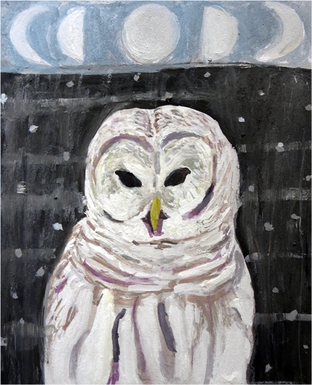 No 76: Barred Owl