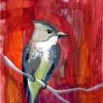 No. 78: Olive-sided Flycatcher