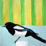 No. 80: Black-billed Magpie