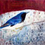 No 92: Black Throated Blue Warbler