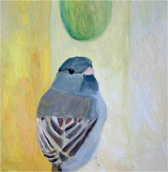 No. 97: Dark-eyed Junco