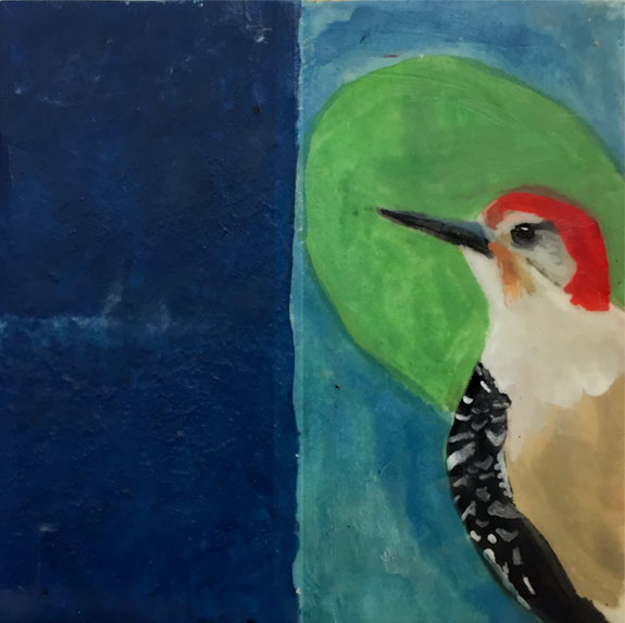 Red-Bellied Woodpecker: Rooted in the Sacred