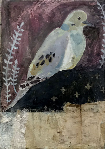 Mourning Dove: Finding Peace Within