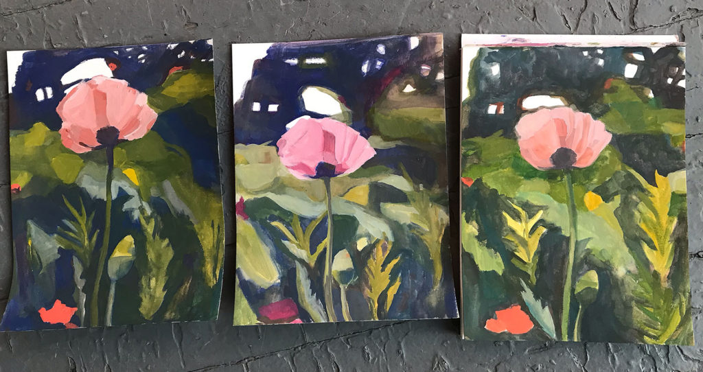 3 gouache paintings of a poppy