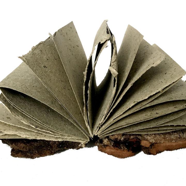 TreeBooks!