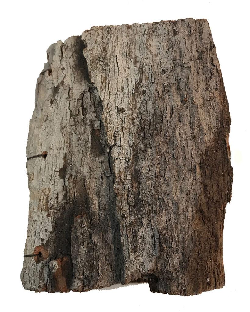 Handbound TreeBook by Bridgette Guerzon Mills