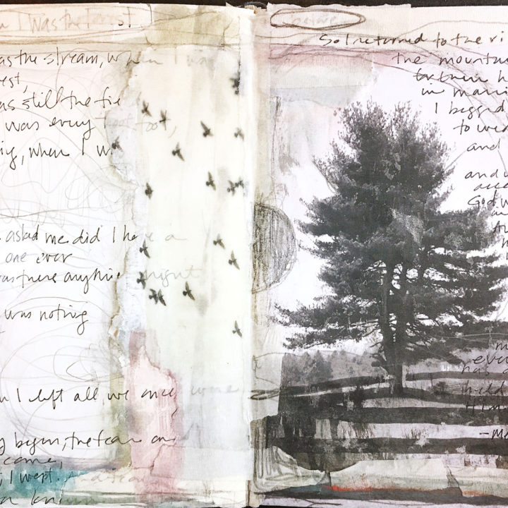 Journaling: when i was the forest